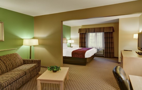 Comfort Suites Lindale Tyler North - King Bed