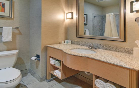 Comfort Suites Lindale Tyler North - Bathroom